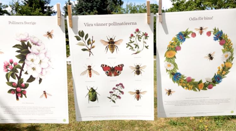 Pollinera sverige affischer